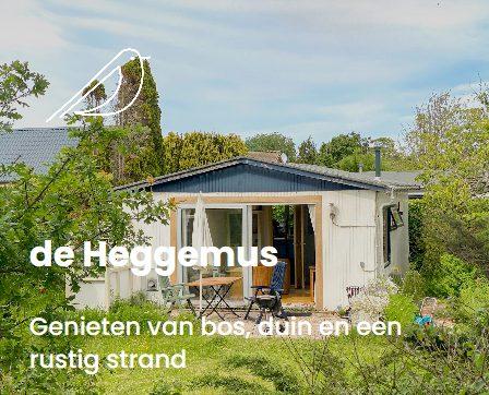 portfolio de Heggemus